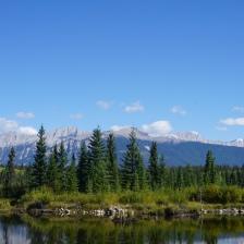 Mitten im Jasper Nationalpark. Die Natur hat mich an jedem einzelnen Tag unserer Reise fasziniert.