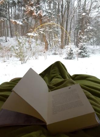 Ein gutes Buch und ein gemütliches Plätzchen. Was kann es schöneres geben?